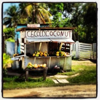 Ice cold coconut